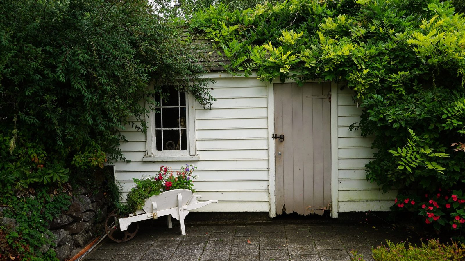 shed airbnb