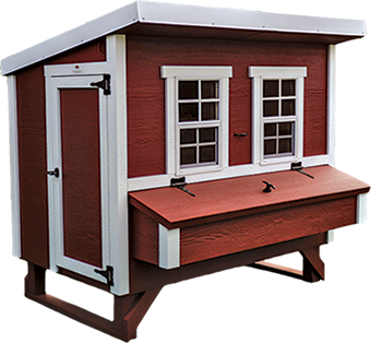 large chicken coop for hens